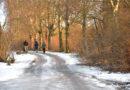Nodokļu eksperte: Latvijā jāievieš ģimenes nodokļu deklarācija