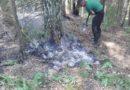 Pateicoties operatīvai dienestu rīcībai, lieli postījumi dabai Ķemeru Nacionālā parka ugunsgrēkā nav nodarīti
