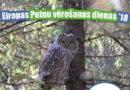6.-7.oktobris – Eiropas Putnu vērošanas dienas