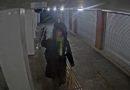 Par Gogoļa tuneļa apķēpāšanu aizturēti divi vīrieši