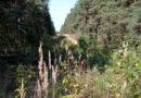 Ziņojums: biotopu un sugu aizsardzības stāvoklis Latvijā būtiski nav uzlabojies
