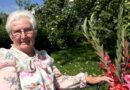 """Maija Pumpuce: """"Mana puķe ir gladiola"""""""