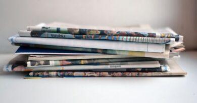 Dienas laikrakstus izkonkurē specializētie pielikumi: drukātās preses attīstība Latvijā