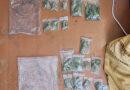 Valsts policijas amatpersonas kratīšanas laikā dzīvoklī konstatēja, iespējams, marihuānu