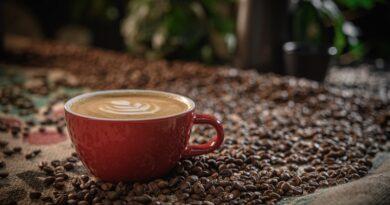 Kā pagatavot lielisku kafiju meža vidū